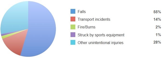 Injury-related permanent disability pie chart